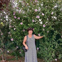 Татьяна, 61 год, Миллерово