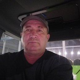 Анатолий, 53 года, Чистополь
