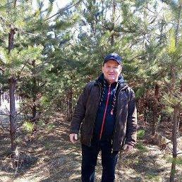 Николай, 51 год, Сумы
