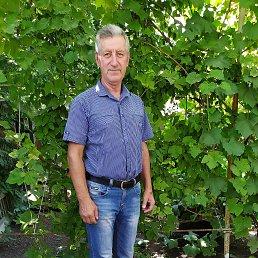 Фото Александр, Межевая, 61 год - добавлено 15 сентября 2019