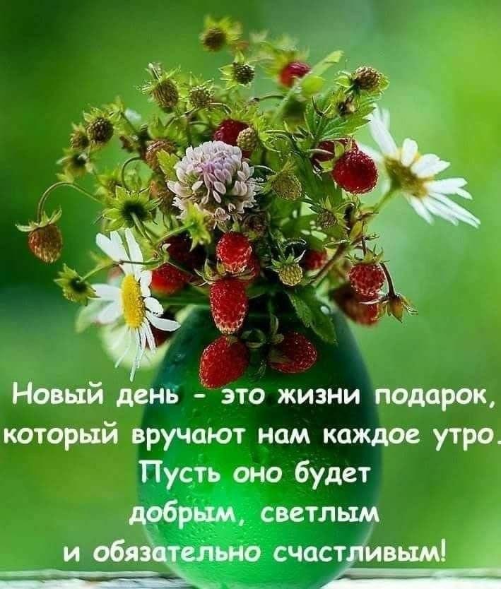 блестящие, цитаты хорошего дня картинки стихи подношения благодарных, матрона