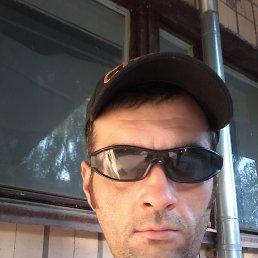 Паша, 40 лет, Новоград-Волынский