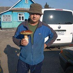 Фото Коля., Кузнецовск, 53 года - добавлено 23 октября 2019