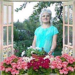 Оксана, 43 года, Кировоград
