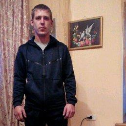 Сергей, 28 лет, Славгородское