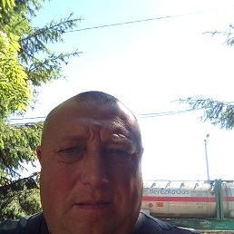 Андрей, 47 лет, Полтава