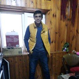 Роман, 28 лет, Харцызск