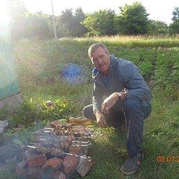 сергей, 49 лет, Курск