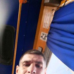 Игорь, 36 лет, Малин