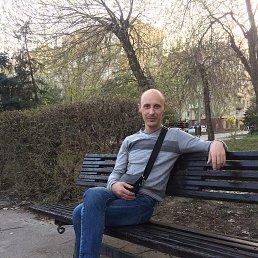 Fedor, 38 лет, Волгоград