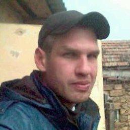 Сергей, 39 лет, Лосиновка