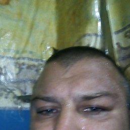 Виктор, 33 года, Кривой Рог