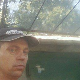 Колян, 31 год, Вольнянск