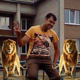 Роман, 25 лет, Львов