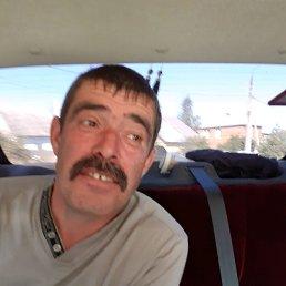 Серш, 40 лет, Куркино