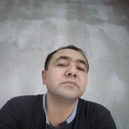 Тургун, 48 лет, Монино