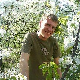 Серёжа Белик, 34 года, Луганск