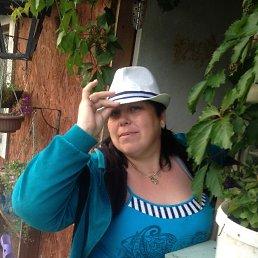 Татьяна, 41 год, Волхов