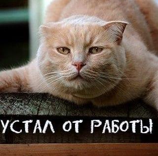 Я что-то пропустила ???? )))))))))))))).КАКАЯ СТИРКА ???Одинокий мужчина 30 лет, рост 176 ...