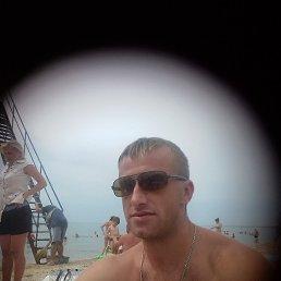 Олег, 30 лет, Запорожье