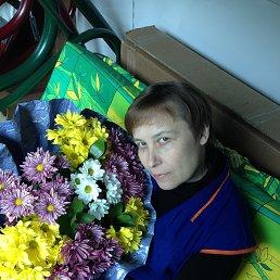 Елена, 50 лет, Кольчугино