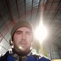Александр, 32 года, Красногвардейское