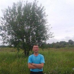 Никита, 41 год, Калининград