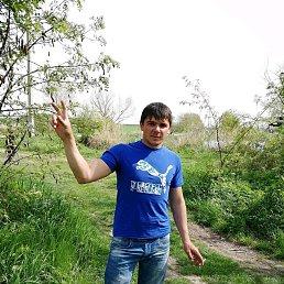 Дмитрий, 27 лет, Кореновск