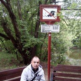 Константин, 47 лет, Коломна-1