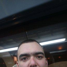 Андрей, 29 лет, Мытищи