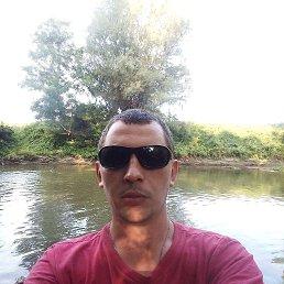 Роман, 28 лет, Мостиска