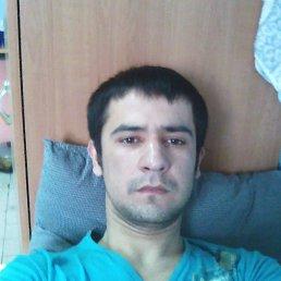 Sherbek, 24 года, Фрязино