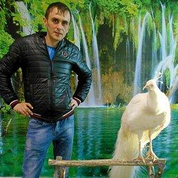 Юрий, 29 лет, Кузнецк