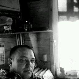 олег, 42 года, Тим