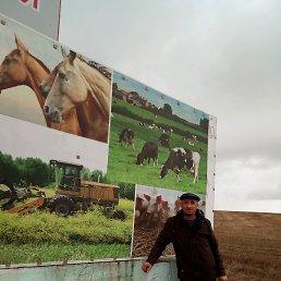 Радмир, 45 лет, Усть-Луга