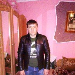 Олег, 33 года, Мостиска