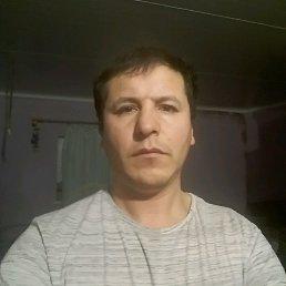 Шукрулло, 35 лет, Верея