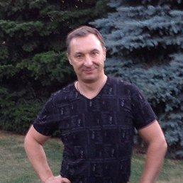 Роман, 38 лет, Червоноград