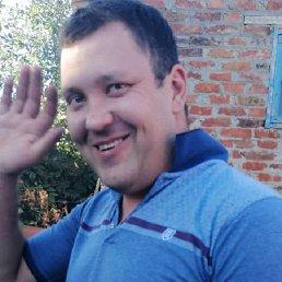 Anatoli, 28 лет, Милютинская