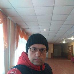 Дмитрий, 36 лет, Ромны