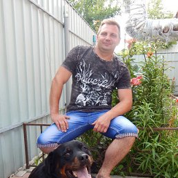 Виталий, 42 года, Лисичанск