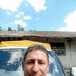 Константин, 50 лет, Озерск