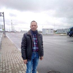 сергей, 51 год, Шуя