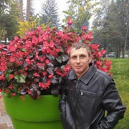 Максим, 29 лет, Кисловодск