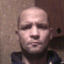 Виктор, 40 лет, Белгород