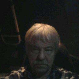 Улдис, 56 лет, Печоры