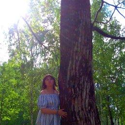 Светлана, 45 лет, Сыктывкар