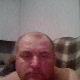 Саша, 39 лет, Крыжополь