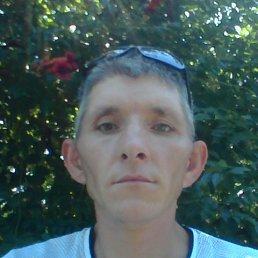 Сергей, 37 лет, Каховка