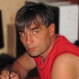Владимир, 44 года, Александрия